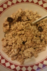 My granola was decent, in that it contains lots of oats, fruit and some honey.